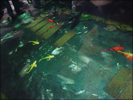 Twilight In Koi Pond >> Nsidr E3 2005 Zelda Koi Pond